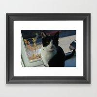Meow Meow Framed Art Print