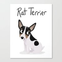 Rat Terrier - Cute Dog S… Canvas Print