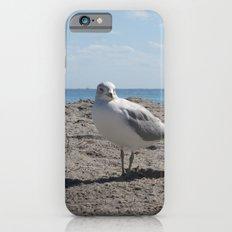 Mine Mine iPhone 6 Slim Case