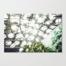 Heliconius sara vs. The Faux Rainforest Canvas Print
