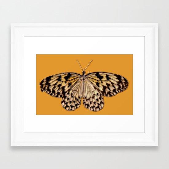 Untitled Butterfly #5 Framed Art Print