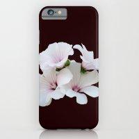 Beautiful summerflowers iPhone 6 Slim Case