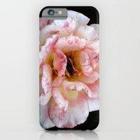 Pure iPhone 6 Slim Case
