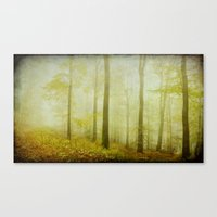 mist in the woods Canvas Print