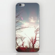 Sunset Hot Air Balloons iPhone & iPod Skin