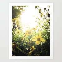 LUV IN THE SUN Art Print