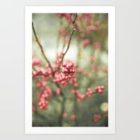Nature's Candy Art Print