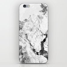 Between the Trees iPhone & iPod Skin