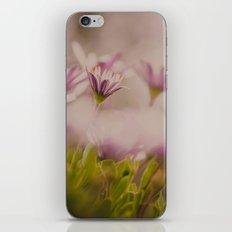 Hidden Beauty iPhone & iPod Skin