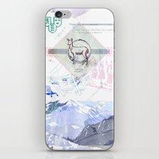 Viking Relics iPhone & iPod Skin
