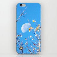 Goodnight Moon iPhone & iPod Skin