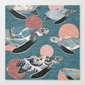 Sea Turtle Polka Canvas Print