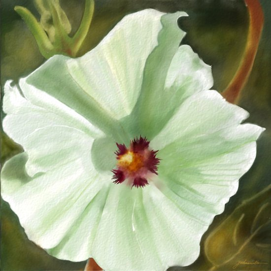 Flower Two Art Print