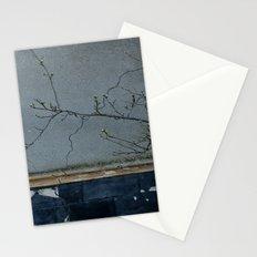 window Stationery Cards