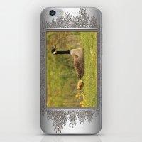 Canada Goose Family iPhone & iPod Skin
