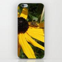Yellow Flower #1 iPhone & iPod Skin