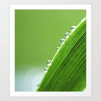 On The Edge Of Green - W… Art Print