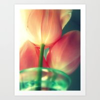 Soft Pink Tulips Art Print