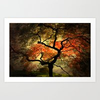 japanese Art Prints featuring Japanese by Philippe Sainte-Laudy