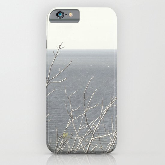 Branches at the sea iPhone & iPod Case