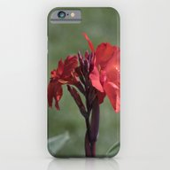 Longwood Gardens - Sprin… iPhone 6 Slim Case