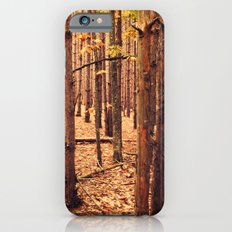 A Cathedral of Trees Slim Case iPhone 6s
