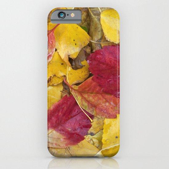 """Rain leaves"" iPhone & iPod Case"