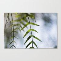 Fresh Leaves Canvas Print