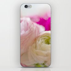 PASTEL COLORED RANUNCULUS iPhone & iPod Skin