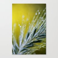 Abstract With Dew Canvas Print