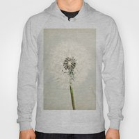 Dandelion Dreams  Hoody