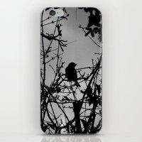 Silhouette Bird.  iPhone & iPod Skin