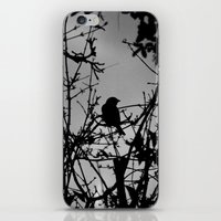 Silhouette Bird.  iPhone & iPod Skin