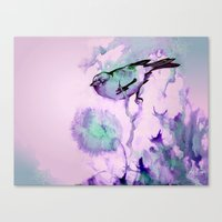 Finch Bird Canvas Print