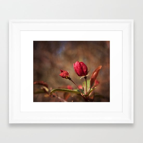 Early Spring Framed Art Print
