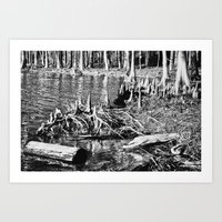 On The Bayou. Art Print