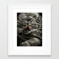 The Lone Red Panda Framed Art Print