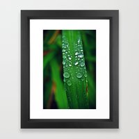 Rainy Drops (Color) Framed Art Print