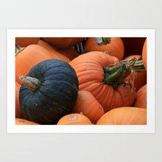 Fall's Pumpkins Art Print