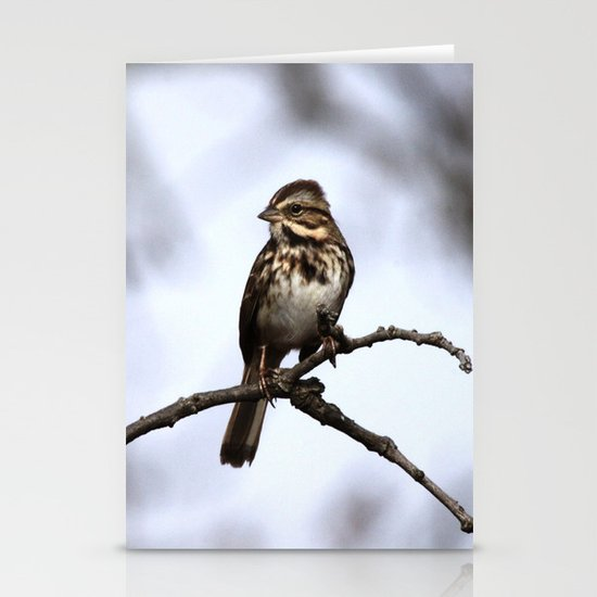 Song Sparrow Stationery Card
