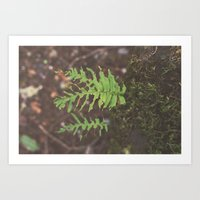 Hungry Hungry Caterpillar Forest Nature Print Art Print