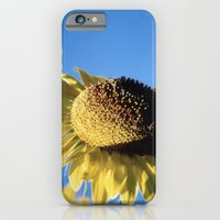 iPhone & iPod Case featuring Bulging Sunflower by Shadorma