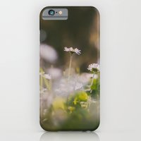 iPhone & iPod Case featuring White Daisy by Hello Twiggs