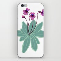 Butterwort iPhone & iPod Skin