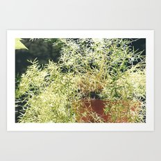 nature 1 Art Print