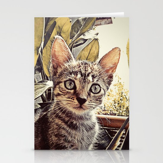 Mouser Stationery Card
