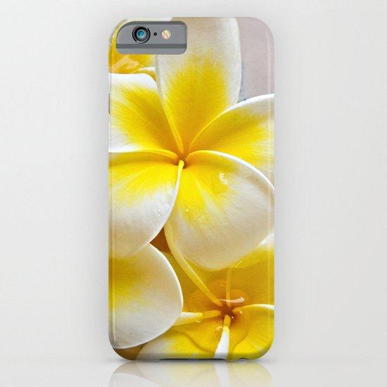 Plumeria Blossoms iPhone & iPod Case