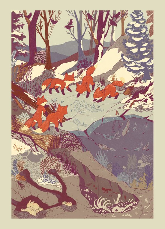 Fisher Fox Canvas Print