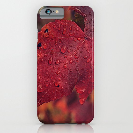 Fall Drops II  iPhone & iPod Case