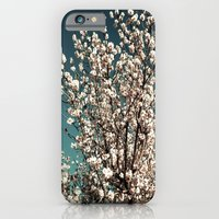 iPhone & iPod Case featuring Winter Blossoms by kangarooster